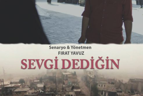 Sevgi Dediğin / WHAT YOU CALL LOVE?